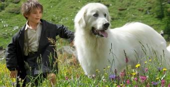 Легендарный фильм «Белль и Себастьян» впервые в российском прокате!