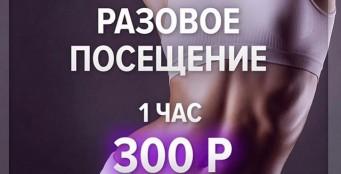Разовое посещение, 1 час - 300 рублей!