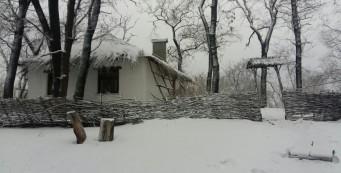 Усадьба Репино — осень-зима