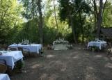 Проведение свадеб, корпоративов Репино